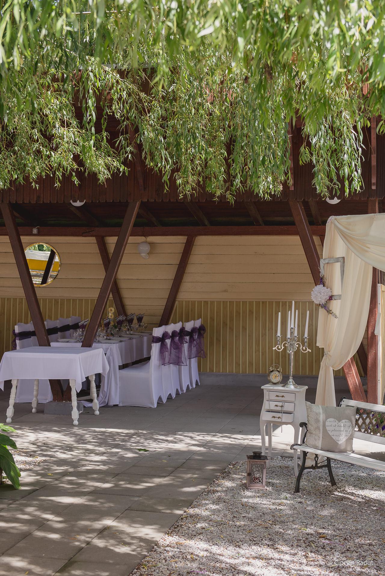 nunta tarnava 2016 (23)