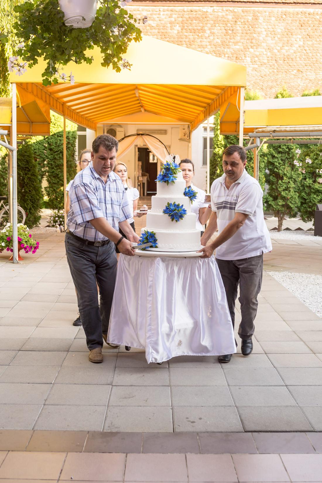 nunta tarnava (16)